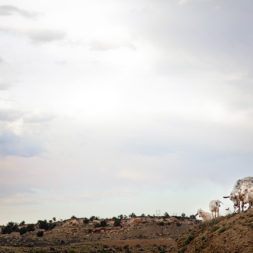 Arizona   50 States Photography Project