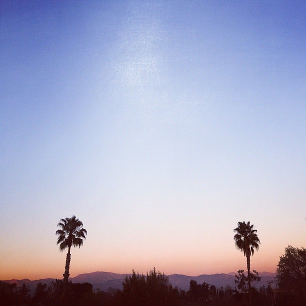 First Month, First Impressions   Living in Los Angeles