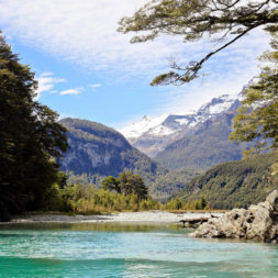 Day 6 Dart River Wilderness Safari & Jetboats | A Guide to South Island New Zealand