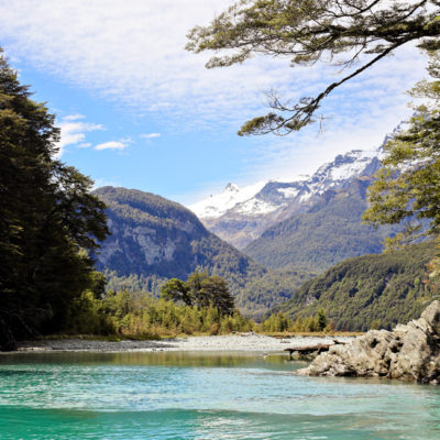 Dart River Wilderness Safari & Jetboats | Day 6 New Zealand Sweet as South Contiki Tour | A Guide to South Island