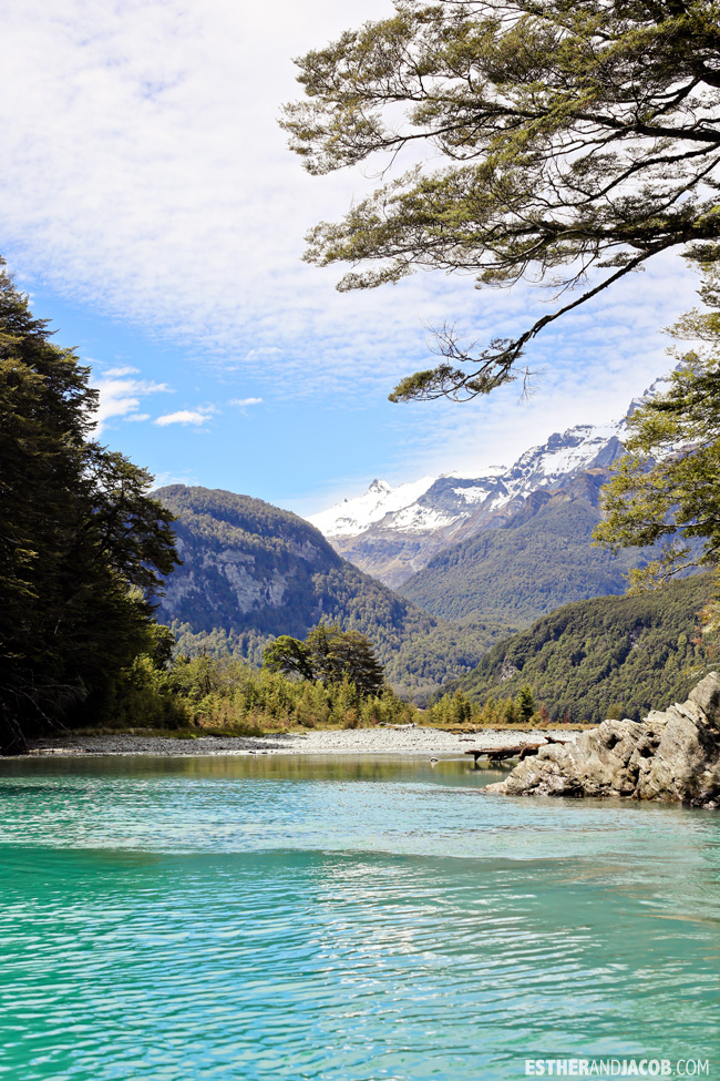 Dart River Wilderness Safari & Jetboats | 10 Day Guide to South Island New Zealand with Contiki.