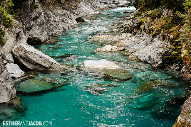 Day 7 Queenstown to Franz Glacier | A Guide to South Island New Zealand