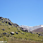 Day 9 Castle Hill and Hokitika Greenstone | A Guide to South Island
