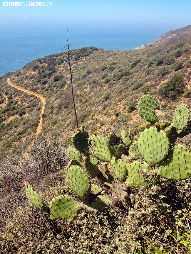 Hiking California: Point Mugu State Park Hiking Trails