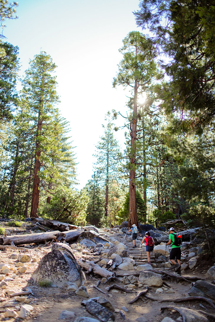 Yosemite Hiking Trails in California // localadventurer.com
