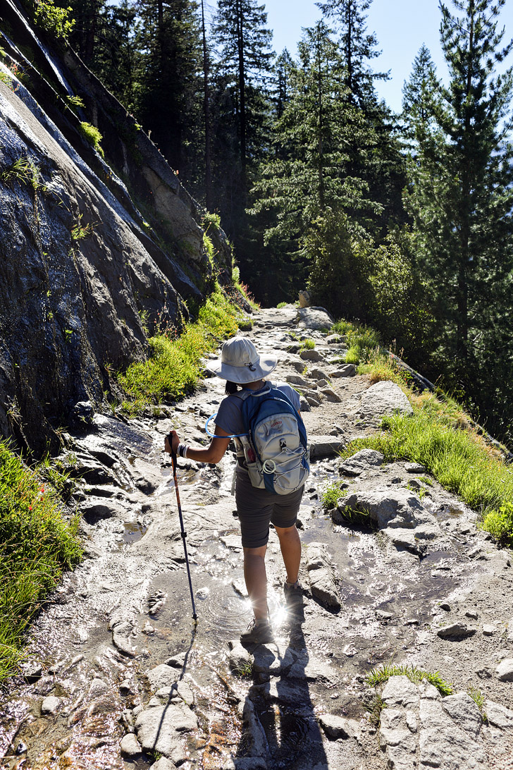 Your Essential Guide on Hiking to Half Dome Yosemite ...