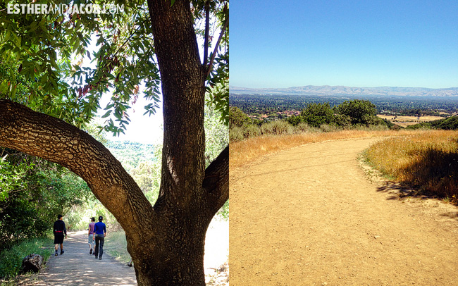 us road trip. road trip to san francisco. Hiking in Rancho San Antonio Park. Bay Area Hikes.