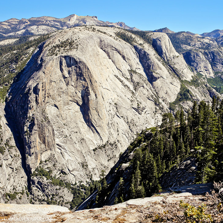 Views from Sub Dome Yosemite National Park // localadventurer.com