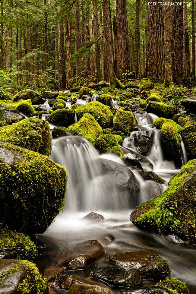 sol duc falls. sol duc olympic national park wa. hiking olympic national park. the olympic national park washington.