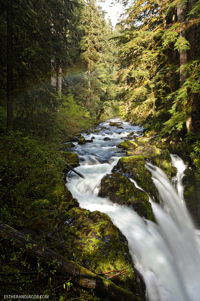 4 Things to Do in Olympic National Park Washington: Sol Duc Falls.