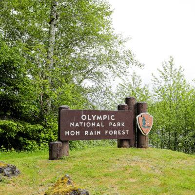 olympic national park entrance sign. hoh rainforest. hoh rain forest. the olympic rainforest. hoh river rainforest. hoh rainforest washington. olympic national park wa