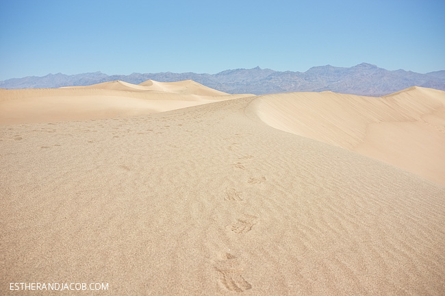 death valley photos. mesquite flat dunes death valley California. death valley park. visit death valley ca. death vally