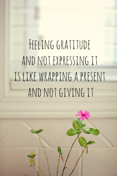 I'm learning how to be grateful. This is a blog on gratitude. quotes for gratitude. expressing gratitude quotes. I love william ward quotes. I'm being grateful. expressing gratitude. gratefulness.