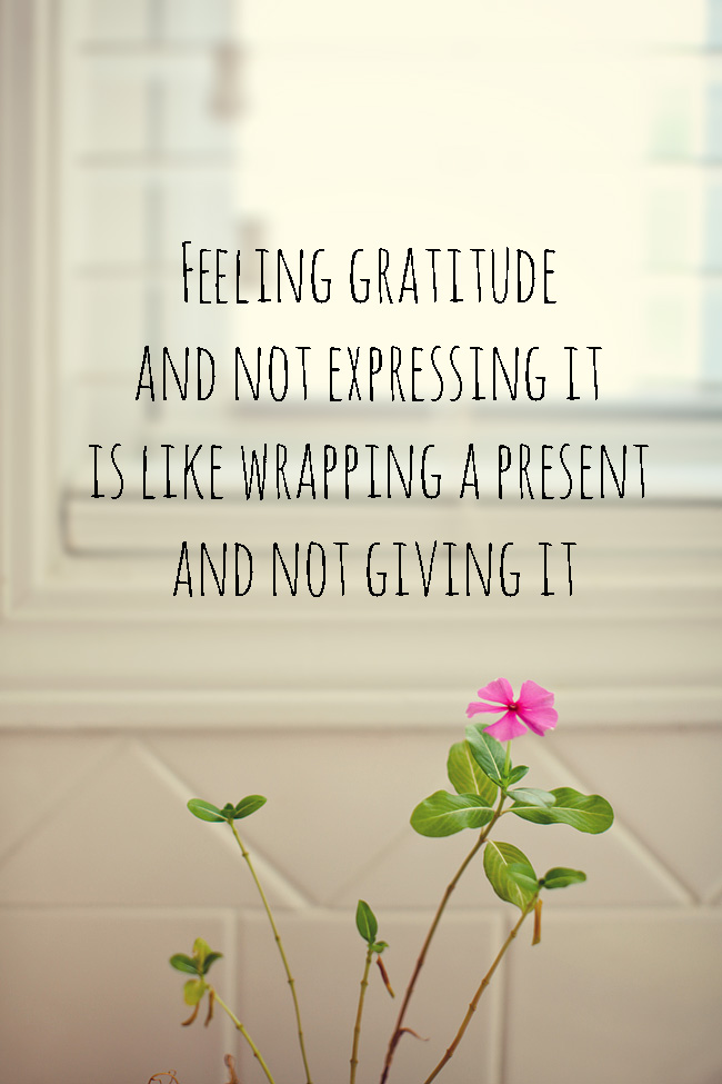 Expressing Gratitude | Week 2 On My Gratitude Journey