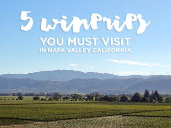 5 Best Wineries in Napa Valley California // localadventurer.com