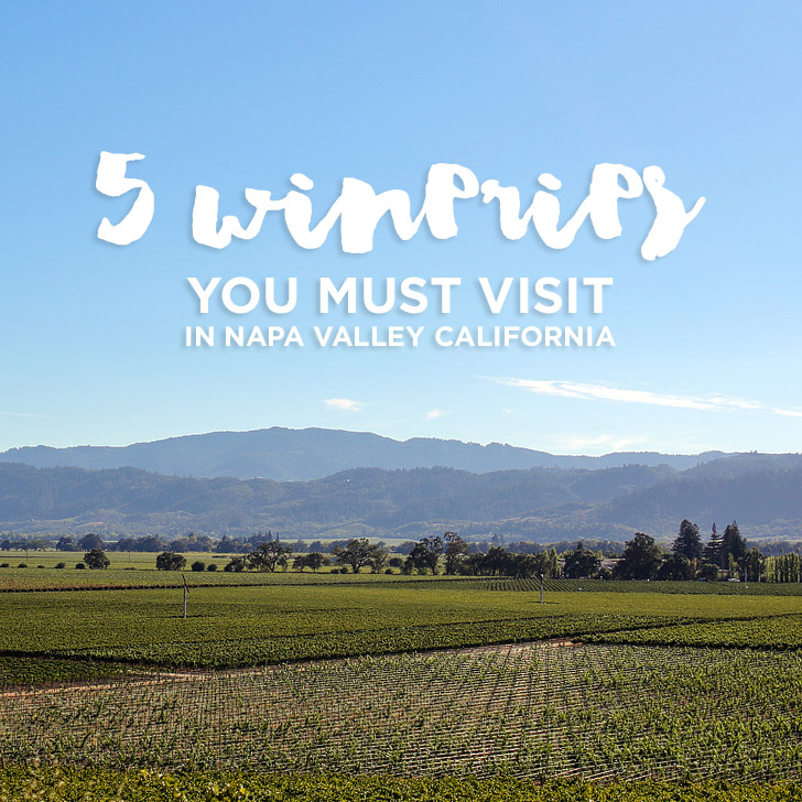 Best Wineries in Napa Valley CA You Must Visit