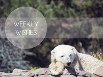 weekly goals and personal goal setting in 168 hours. weekly wishes and time management tips. time management strategies and the importance of time management.