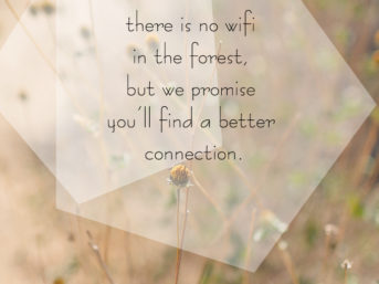 There is no wifi in the forest, but we promise you'll find a better connection. A week of personal growth. This is my gratitude list for the week. forgiveness. unplugging from technology for the week. unplug. graditude 101. This is week 10 of practicing gratitude. inspirational life quotes. personal growth quotes.