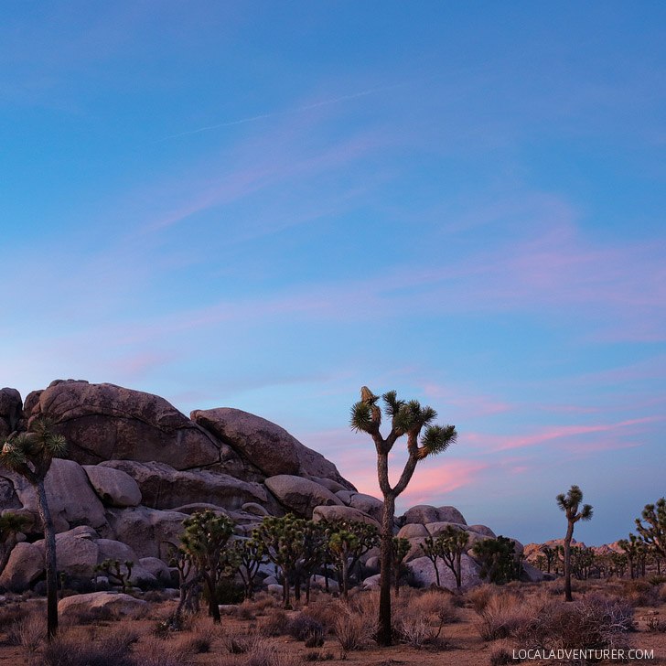 Sunset at Hall of Horrors Joshua Tree National Park CA (11 Amazing Things to Do in Joshua Tree National Park) // localadventurer.com