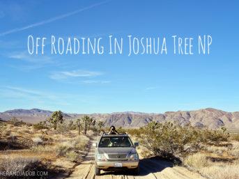 off roading in joshua tree national park. joshua tree park. joshua tree national. joshua tree park california. joshua tree photos. joshua tree nationalpark.