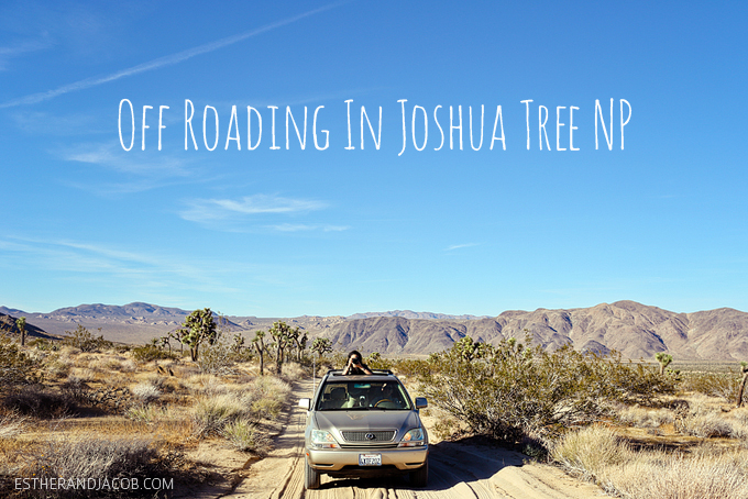 Off Roading in Joshua Tree National Park Local Adventurer Travel