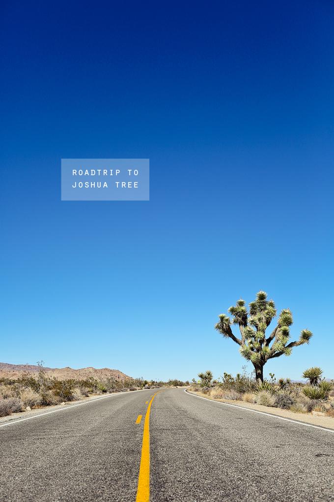 roadtrip to joshua tree