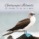 13 Things to Do in the Galapagos Islands & Tips for Your Visit