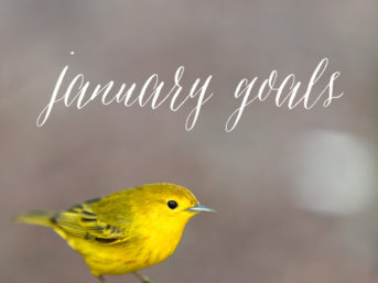 goals for january