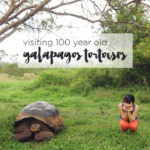 Visiting the 100 Year Old Galapagos Tortoise at Rancho Primicias