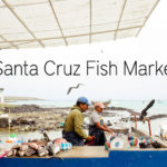 Santa Cruz Fish Market   Puerto Ayora Galapagos Islands