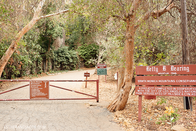 We love hiking in los angeles and the betty b dearing trail at coldwater canyon park is one of our favorite hiking trails in la. Betty Dearing Trail.