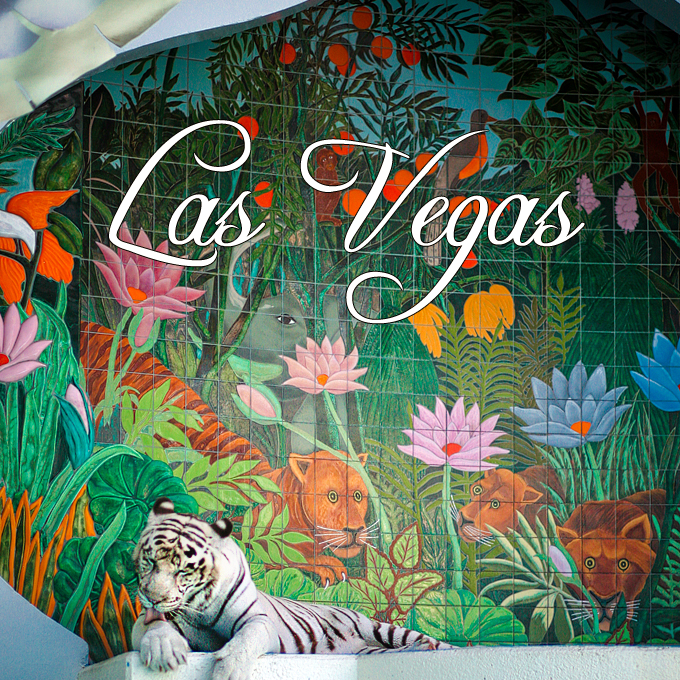 7 Reasons Why I Love Living in Las Vegas (Already)!