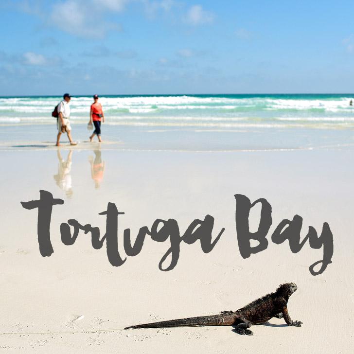 Tortuga Bay Ecuador.