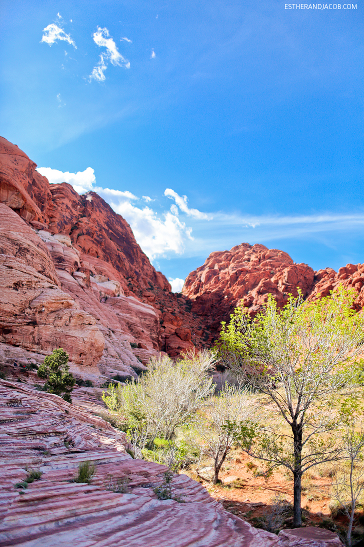 Las Vegas Red Rock Canyon Nevada | Red Springs Loop or Calico Loop.