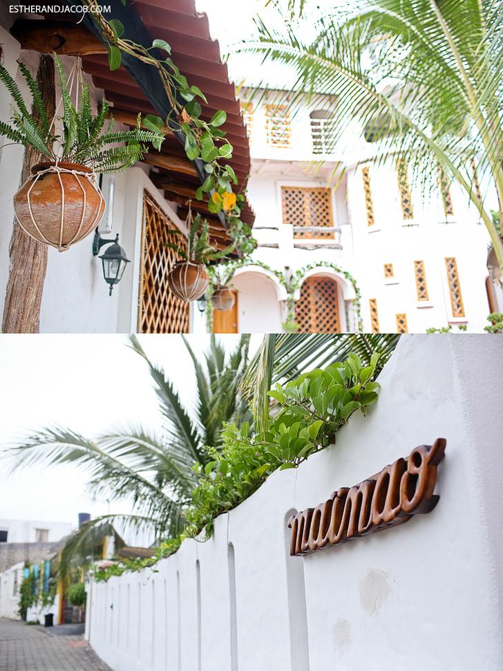 Hotel Mainao | Where to Stay in Puerto Ayora Santa Cruz Island Galapagos.
