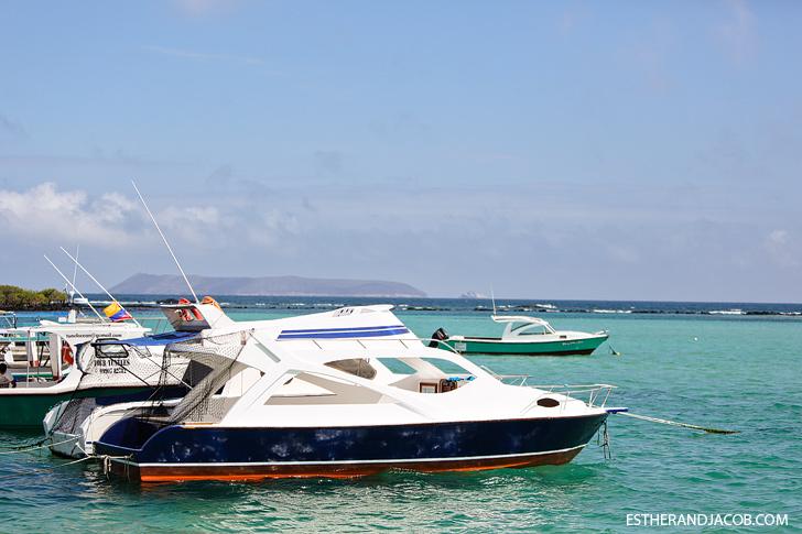 Isabela Galapagos Island Boats at the Pier.