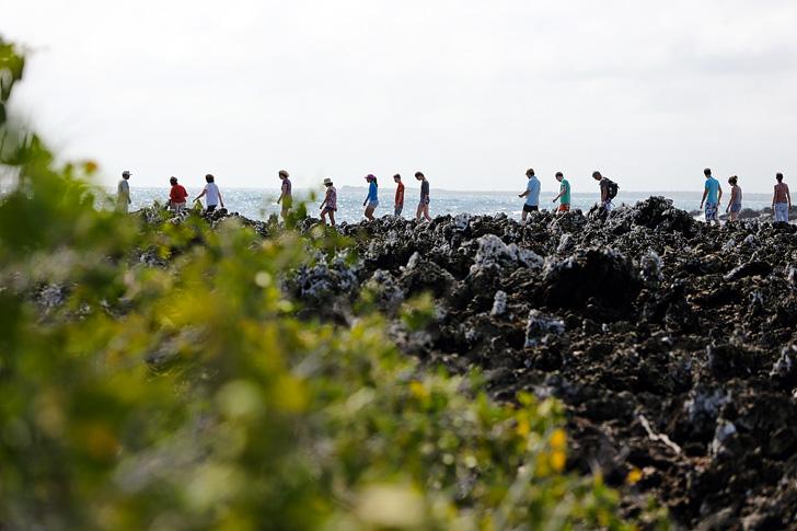 Las Tintoreras | Bay Tour of Isabela Island.