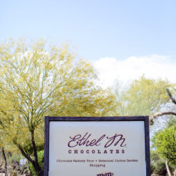 Ethel M Chocolate Factory and Botanical Cactus Gardens