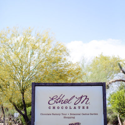 The Ethel M Chocolate Factory and Botanical Cactus Gardens.
