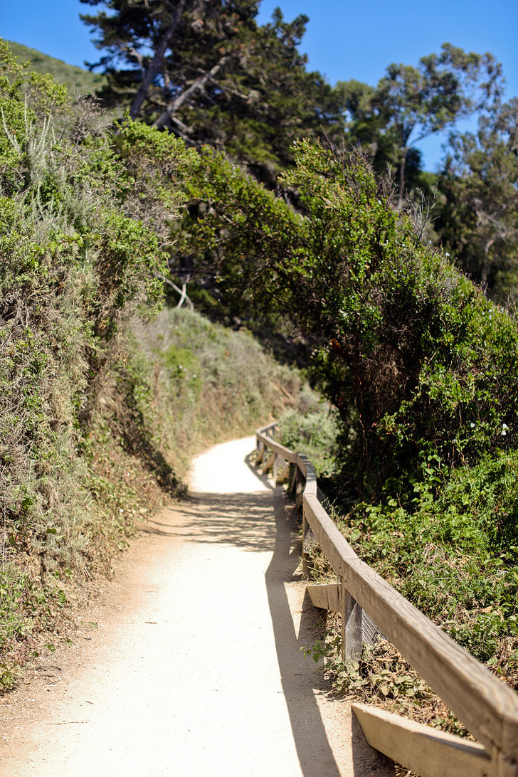 Mcway Waterfall Trail - Julia Pfeiffer Burns State Park Big Sur California USA // localadventurer.com