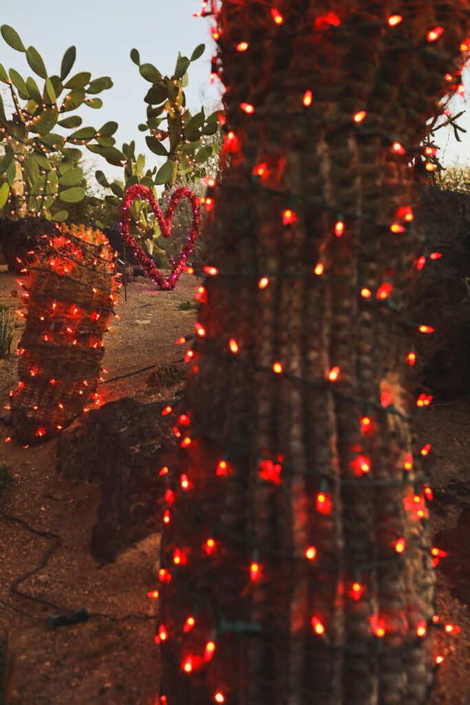 ethel m chocolate factory and botanical cactus garden