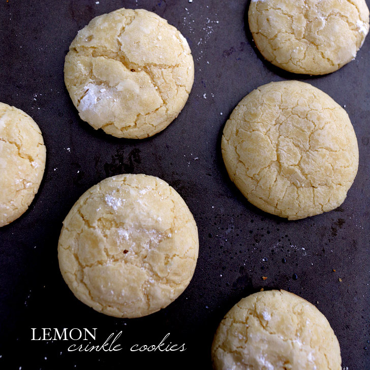 Award Winning Meyer Lemon Crinkle Cookies Recipe