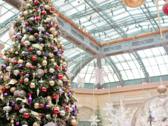 A Las Vegas Christmas at Bellagio Botanical Gardens.
