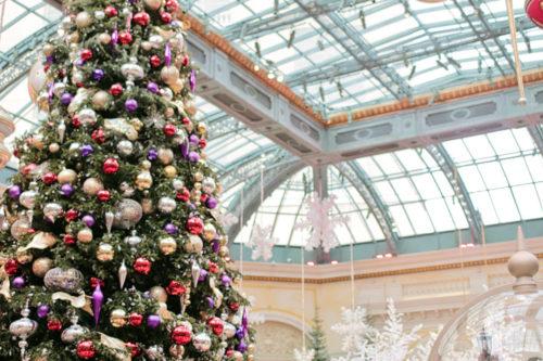 las vegas christmas christmas at bellagio botanical gardens - Las Vegas Christmas 2014