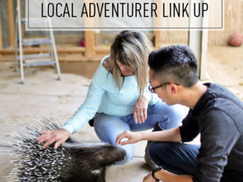 Fun Things to Do in Vegas // Local Adventurer Link Up #14.