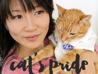 Our Orange Tabby Cat Loves Cat's Pride Fresh & Light Ultimate Care.