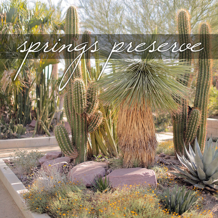 Springs Preserve Las Vegas