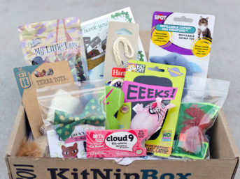 KitNipBox - A Monthly Box of Cat Goodies