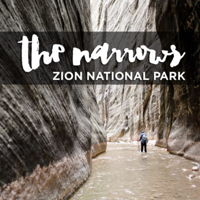{Photo Guide} Hiking the Narrows Zion National Park.