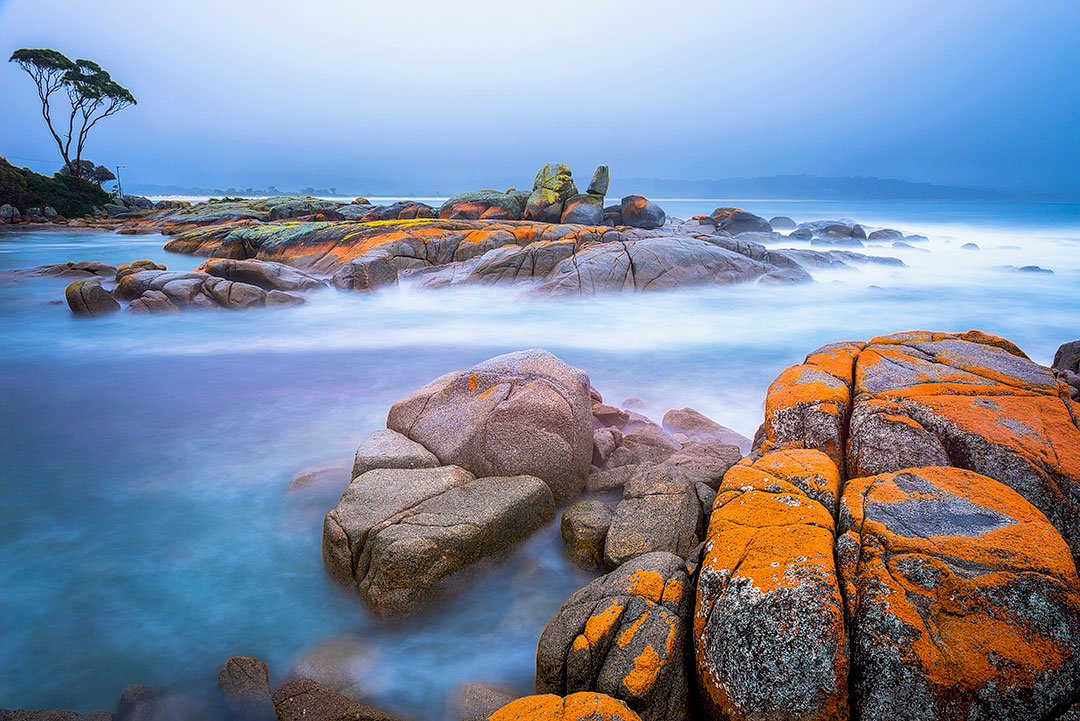 Bay of Fires Tasmania Australia + 25 Best Hikes in the World to Put on Your Hiking Bucket List